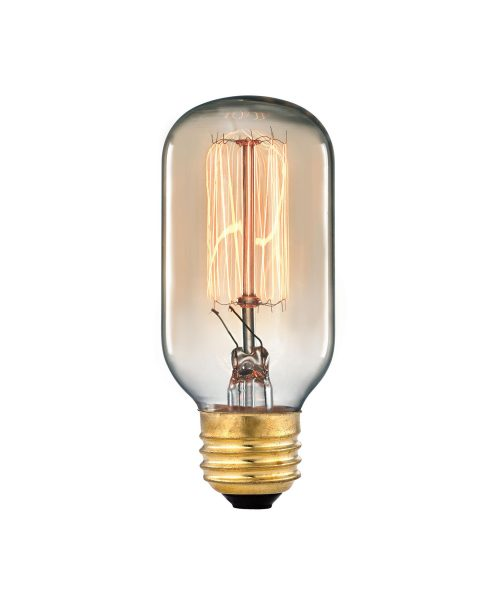 ELK Lighting E26 Medium 60W Vintage Light Bulb ELK Lighting - 1102 Vintage Light Bulb